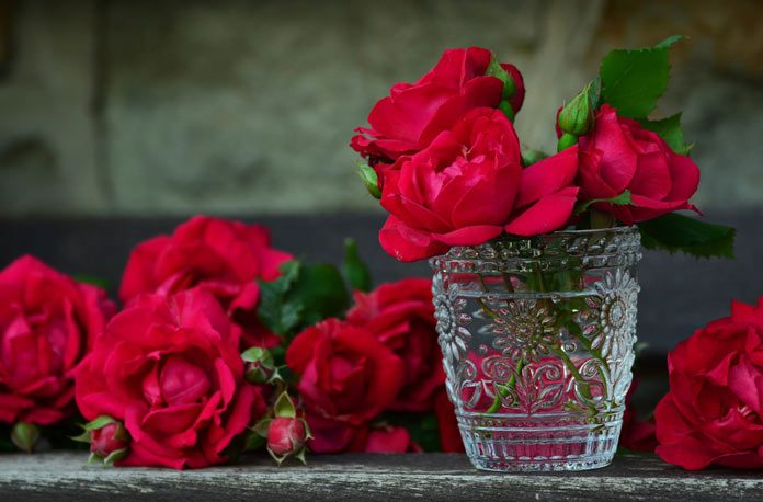 Cum sa tratati rugina la trandafiri