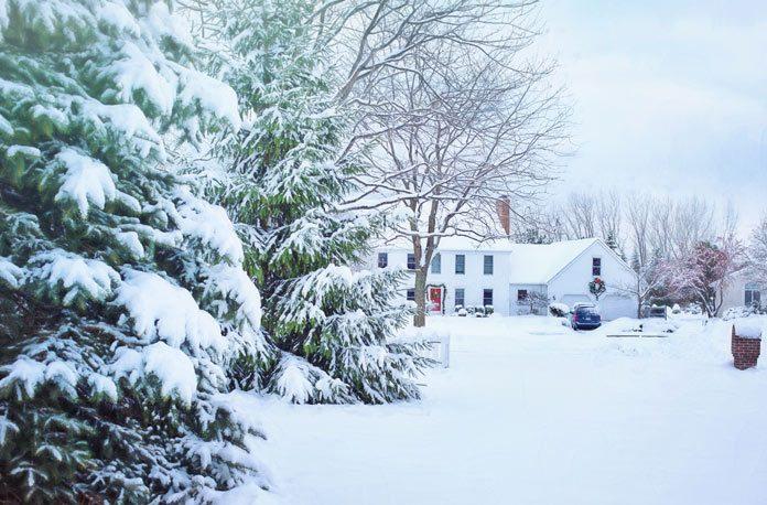 Sfaturi pentru a-ti pregati gradina pentru iarna